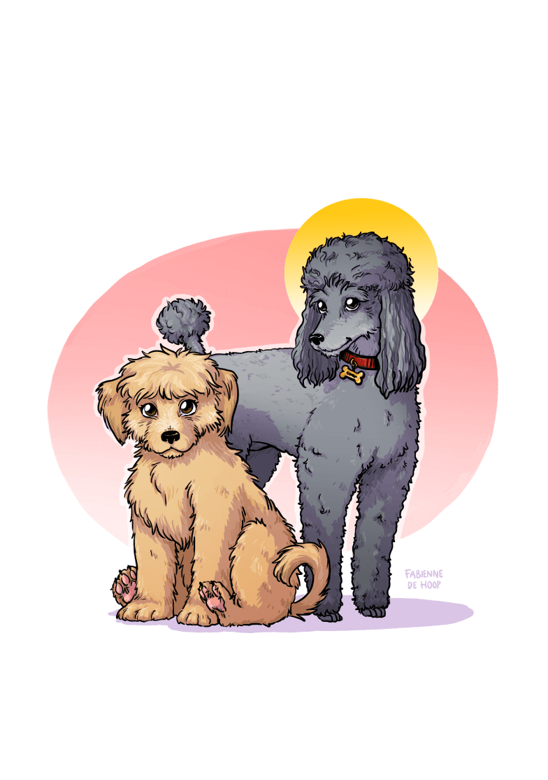 Cadeau portret hondjes
